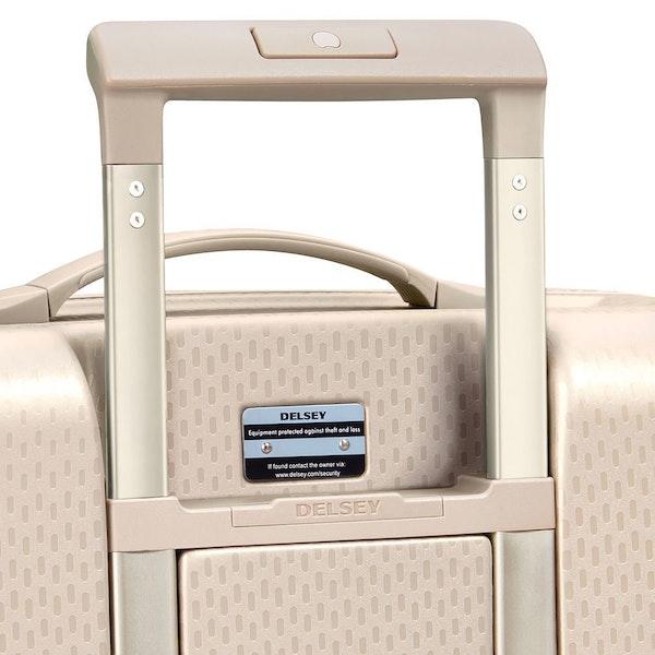 Delsey Turenne Luggage