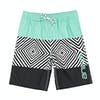 Animal Pipeline Boys Boardshorts - Black