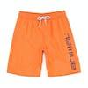 Animal Tannar Boys Boardshorts - Firecracker Orange
