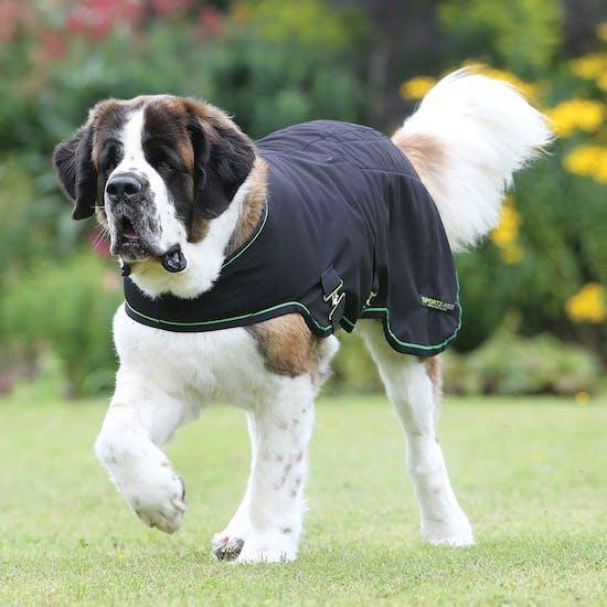 Sportz-Vibe Massage 犬用ジャケット