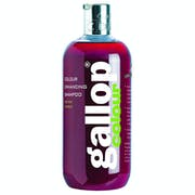 Carr Day and Martin Gallop Colour Enhancing Shampoo