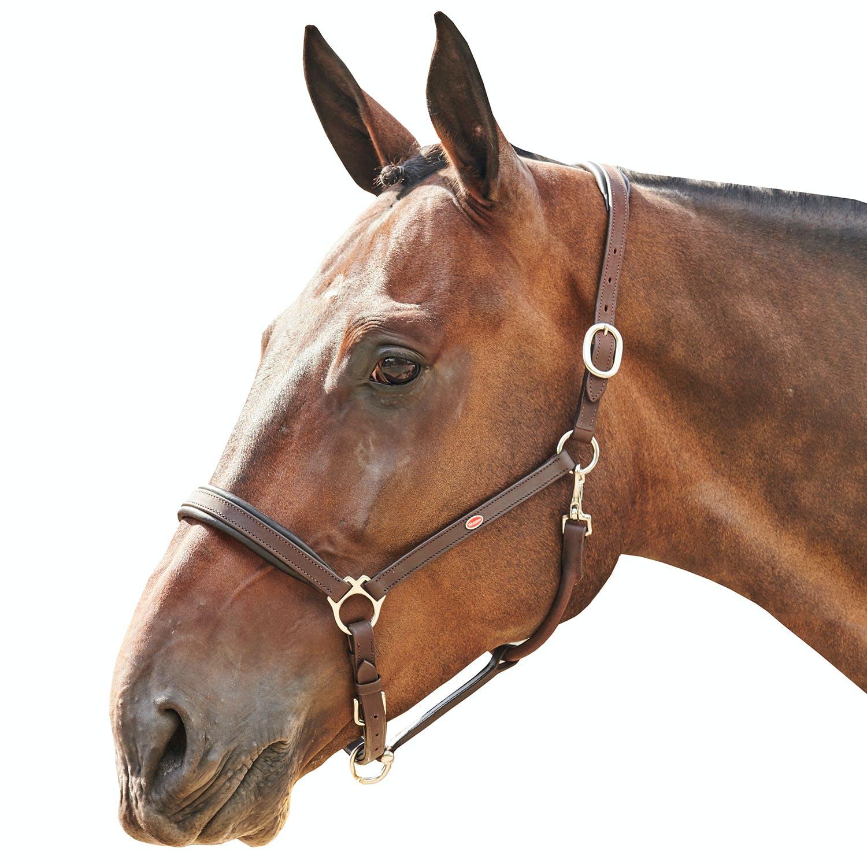 4-spänner Driving Linen Set Size Pony good leather quality!!!