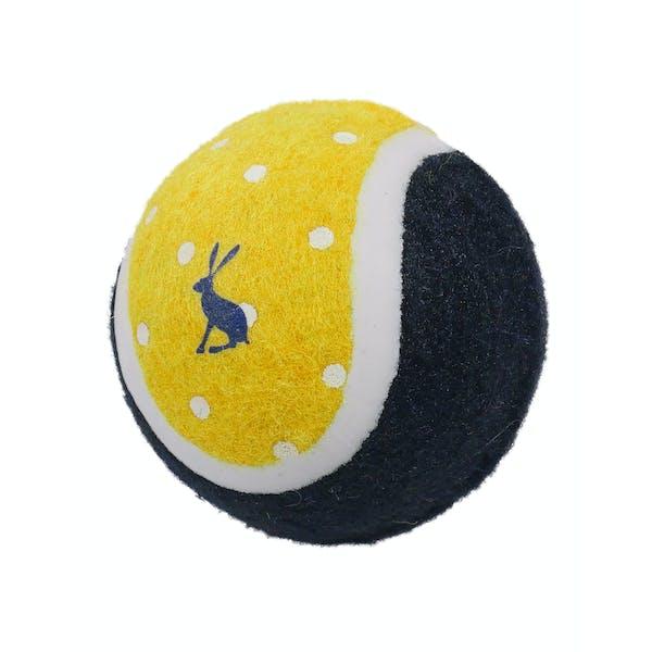 Joules 3 Pack Outdoor Balls Hondenspeelgoed