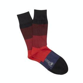 Corgi Ombre Stripe Socks - Navy Port