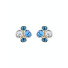 Ted Baker Lynda Jewel Cluster Stud Earrings