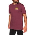 Volcom Experience Ltw Short Sleeve T-Shirt