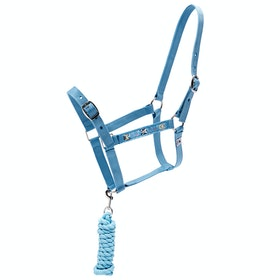 Derby House Pro Frenchie Set of Leadrope and Head Collar - Niagra Ash Rose
