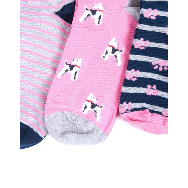 Barbour 3 Pack Terrier Paw Women's Fashion Socks