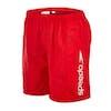 Speedo Challenge 15 inch Water Boys Boardshorts - Red White Stripe