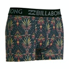 Billabong Ron Underwear Mens Boxer Shorts