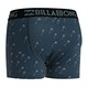 Billabong Ron Underwear Boxer Shorts