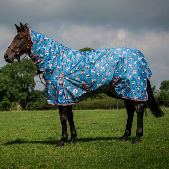 Derby House Pro Frenchie Print Medium Combo Turnout Rug From