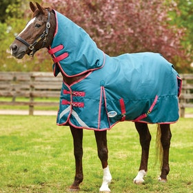 Weatherbeeta ComFiTec Plus Dynamic Medium Detach-A-Neck Turnout Rug - Teal Cerise Yellow