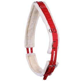 QHP Ontario Girth Lunging Equipment - Bright Red