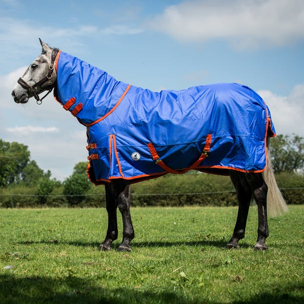 Derby House Pro Medium Detach A Neck Turnout Rug