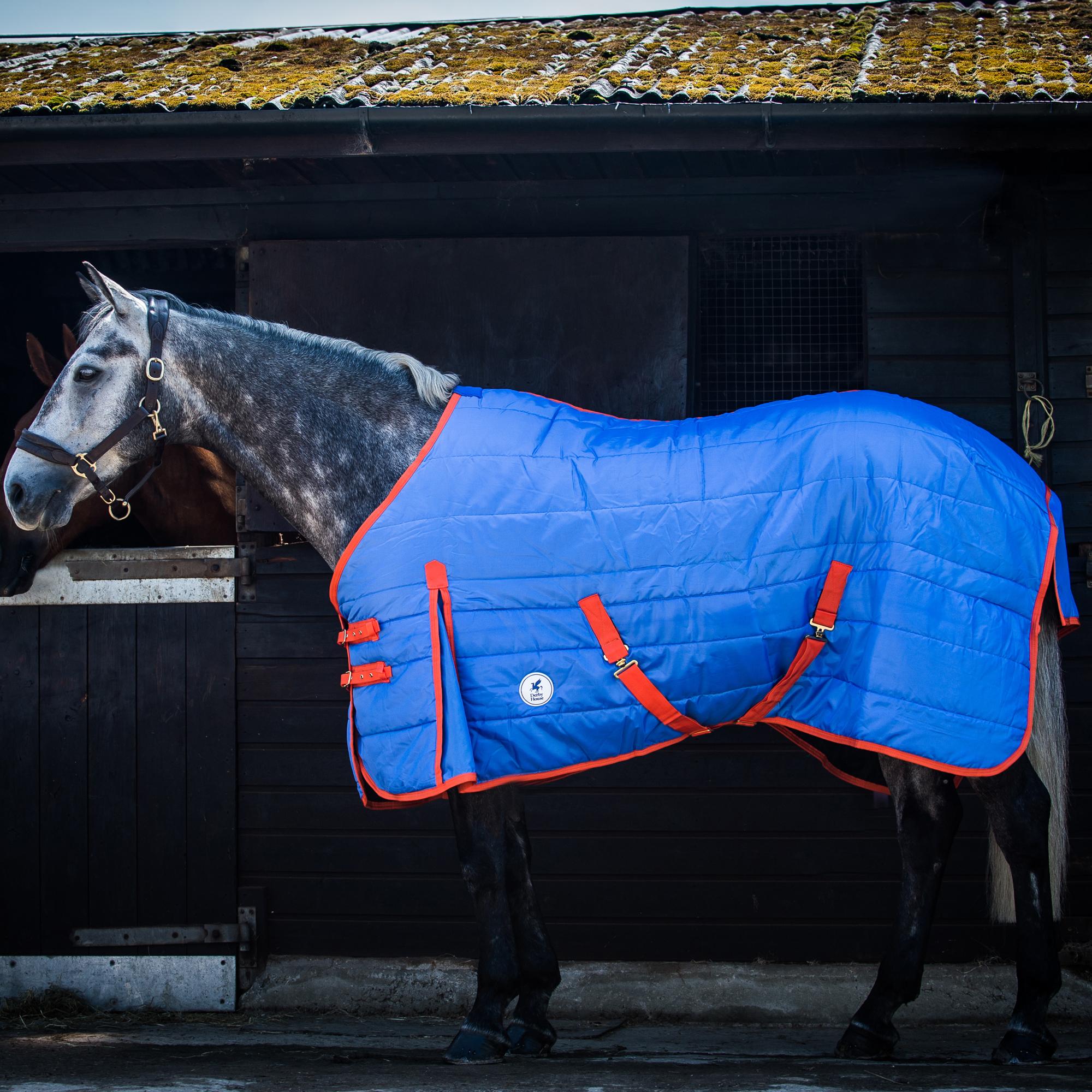 Derby House Pro Dino Standard Fleece Rug
