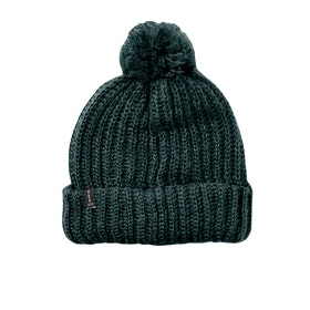 Fox Racing Indio Womens Beanie - Emerald Green